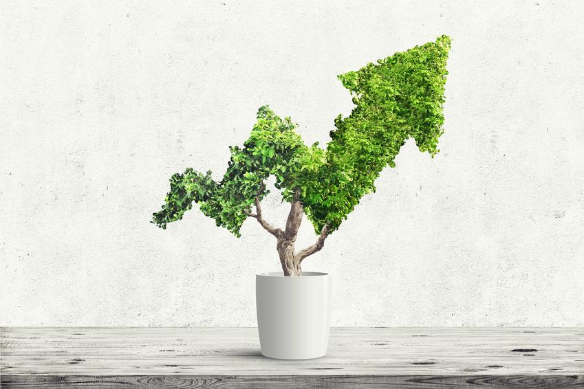 Le CAC 40 ESG, un indice responsable ?